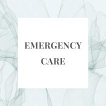 emergency pvzp